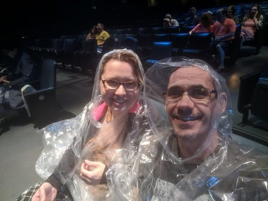 Blue Man Group: Ready for the blueman group!