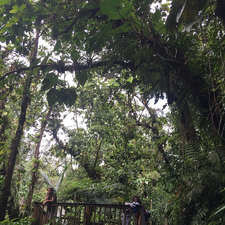 Parc National, Guadeloupe: photo2.jpg