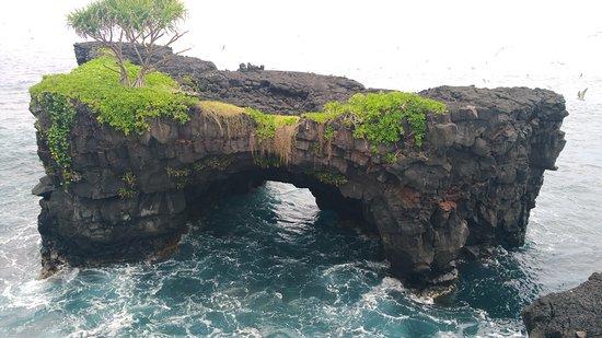 Apia, Samoa: getlstd_property_photo