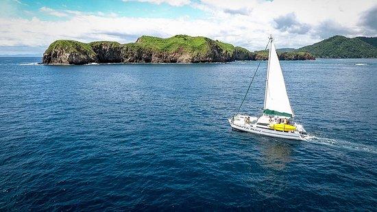 Manta Ray Sailing: A perfect day