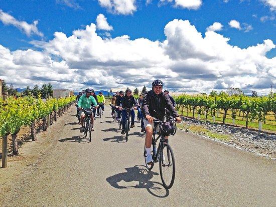 Santa Rosa Bike Wine Tours