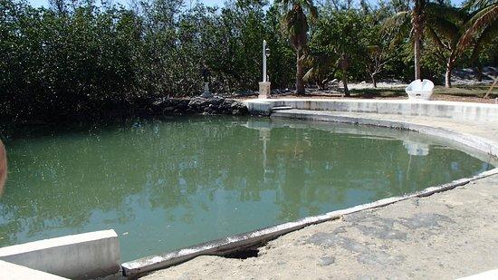 San Pablo Catholic Church: The pond