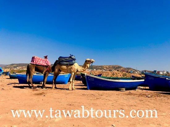 Tawab Tours