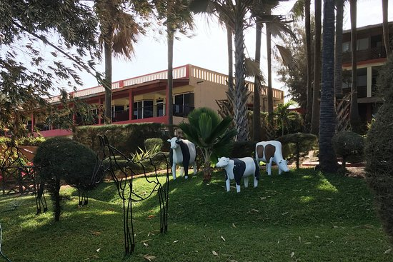 Ngala Lodge: loads of quirky art/sculpture/animals around the grounds