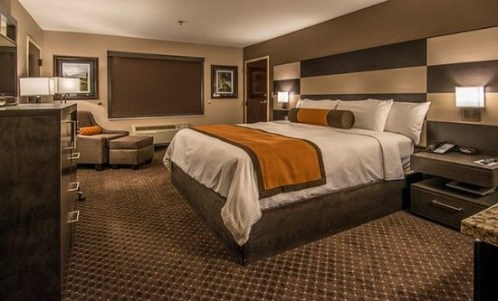 University Inn Hotel: Guest room
