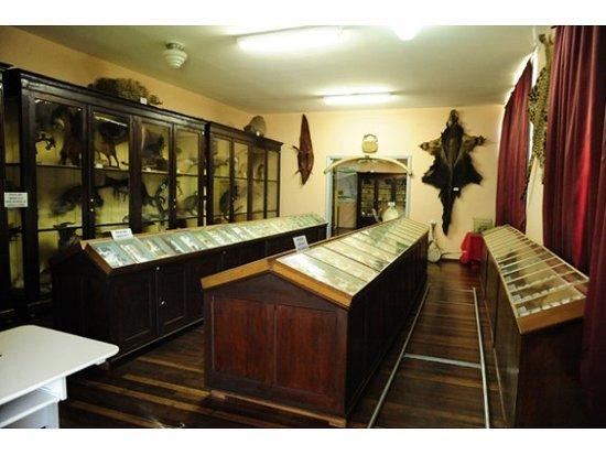 Frei Miguel Museum