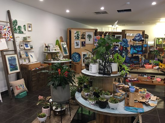 Bassendean, Avustralya: Gorgeous house plants and succulents