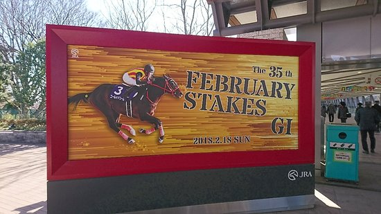 Tokyo Horse Racetrack : DSC_2133_large.jpg