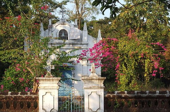 Heritage village walk in Goa - Pasoi de Assagao