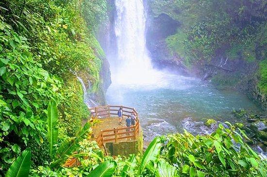 Day trip from San Jose to Doka Coffee Plantations & La Paz Waterfall...