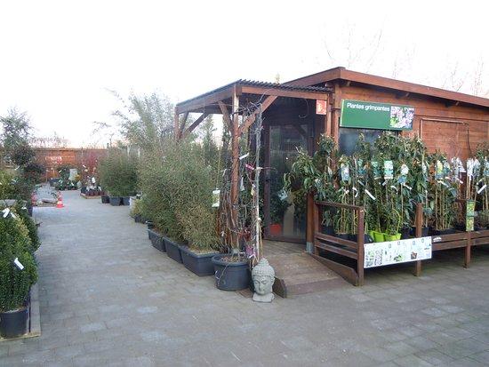 Espace Jardinerie Truffaut Picture Of Domus Rosny Sous Bois