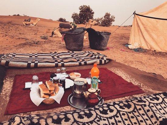 Sahara Landscape Tours