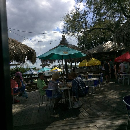 Crystal River Seafood Restaurant Reviews