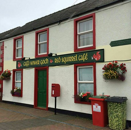 Newborough, UK: Caffi Wiwer Goch - Red Squirrel Cafe