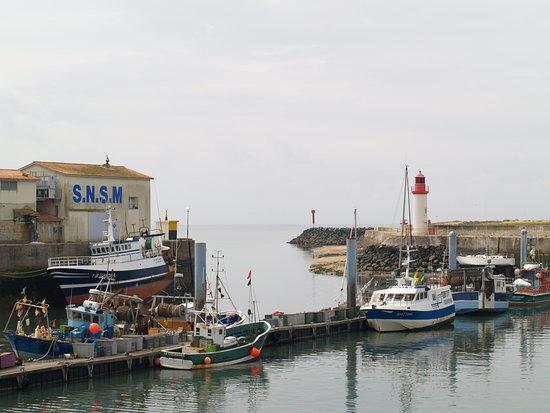 Le Port de la Cotinière : port de la cotiniere