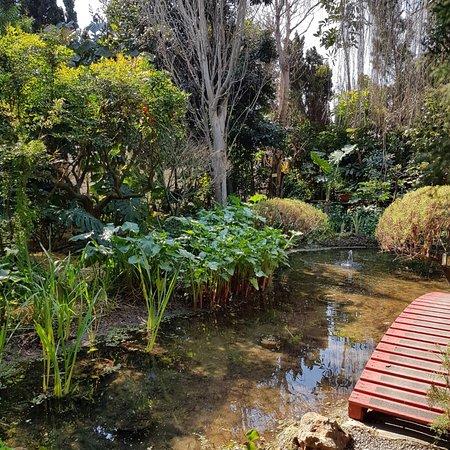 Picture of jardin botanico la almunya del sur for Jardin botanico el ejido