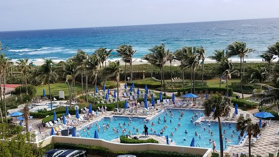 Palm Beach Shores, FL: View of adult pool from room Pompano 4505