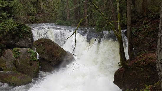 Whatcom Falls Park: Falls at high water in February 2018