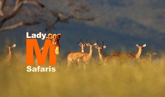LadyM Safaris