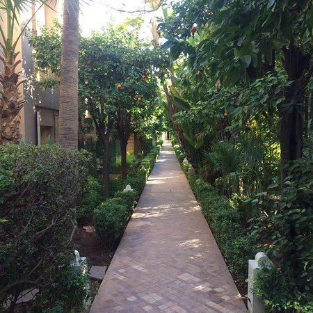 Les Jardins de la Medina: photo2.jpg