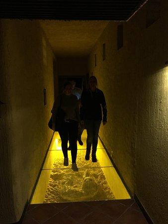 Hotel Xaluca Dades: Prehistorische krokodil in vloer vd gang