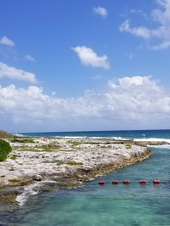 Heaven at the Hard Rock Hotel Riviera Maya: 20180220_130706_large.jpg