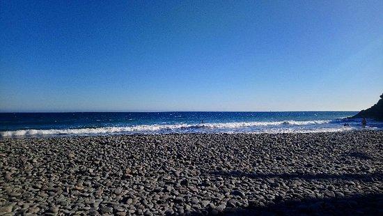 Side Shore: DSC_1221_large.jpg