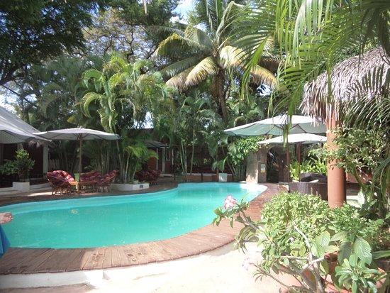La piscine picture of hotel tropicana mahajanga for La piscine review