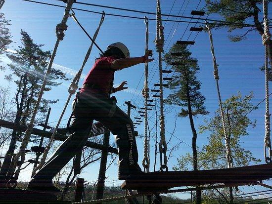 Essex County Treetop Adventure Course: 20170418_165106_large.jpg