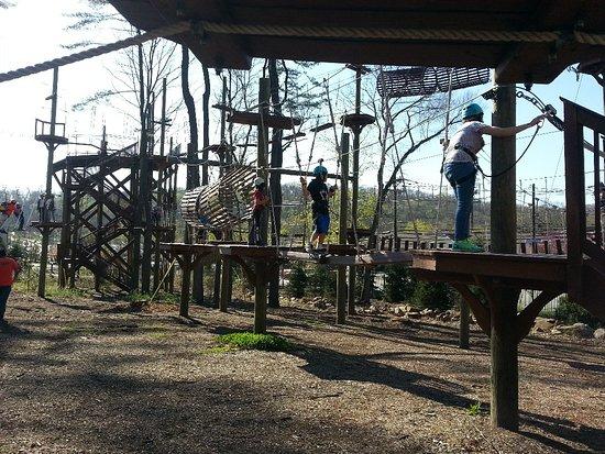 Essex County Treetop Adventure Course: 20170418_164311_large.jpg