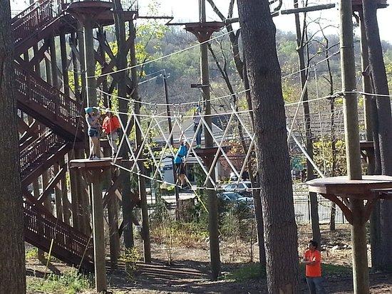 Essex County Treetop Adventure Course: 20170418_171248_large.jpg