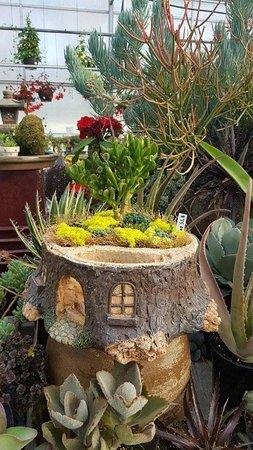 Hardy, VA: Fairy gardens