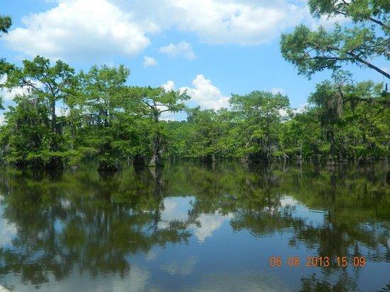 Uncertain, TX: Caddo Lake