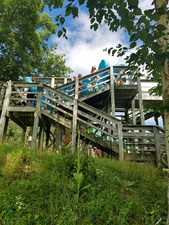 Waiting in Line - Picture of Wild Mountain Water Park, Alpine Slides