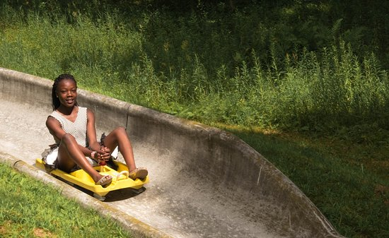 Enjoying with the Alpine Slide - Picture of Wild Mountain Water Park