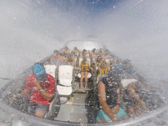 Cams Wharf, Australien: Nose dive!
