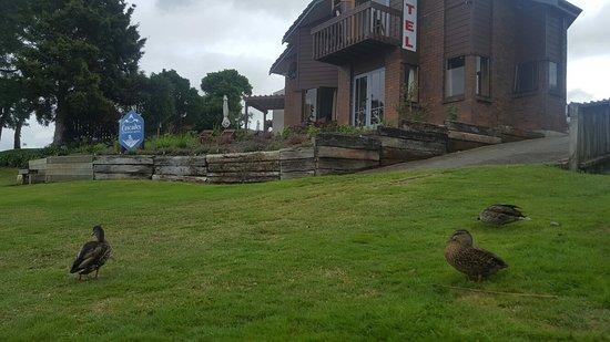 Cascades Lakefront Motel: 20180222_104242_large.jpg