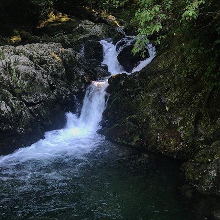 Kahurangi National Park, نيوزيلندا: photo0.jpg