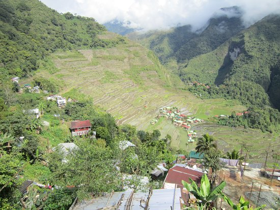 Batad, Philippines: View from the terrace