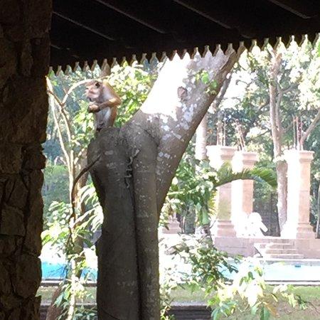 Palm Garden Village Hotel : photo0.jpg