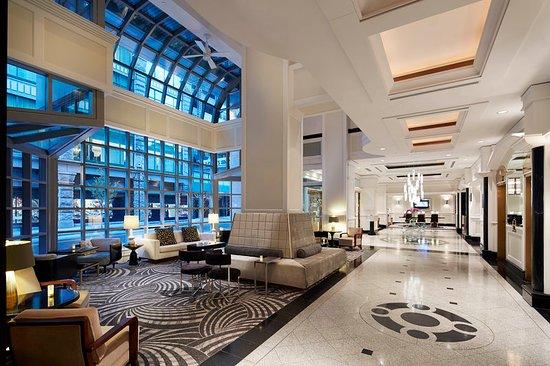 로우스 - 호텔 보그 사진