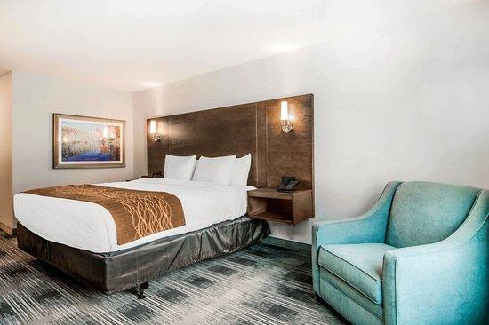 East Ellijay, GA: Guest room
