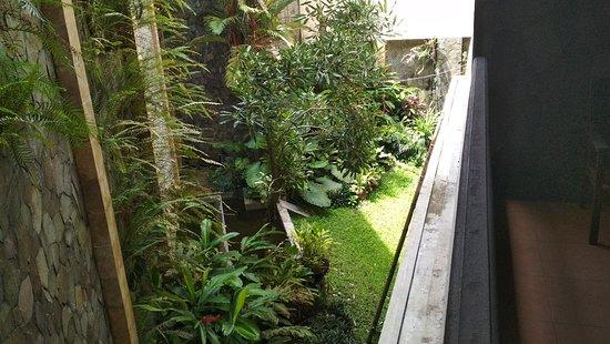 Jember, Indonesia: IMG_20180224_095951_large.jpg