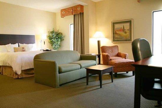 Hampton Inn Staunton : Suite