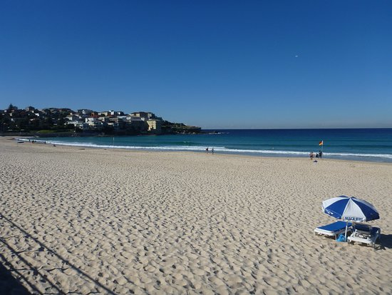 Bondi Beach Hire
