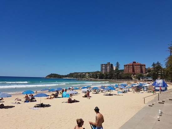 Another perfect Manly beach day