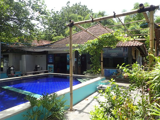 This is our dive center in Pemuteran.  We are the only dive center with its own pool right in fr