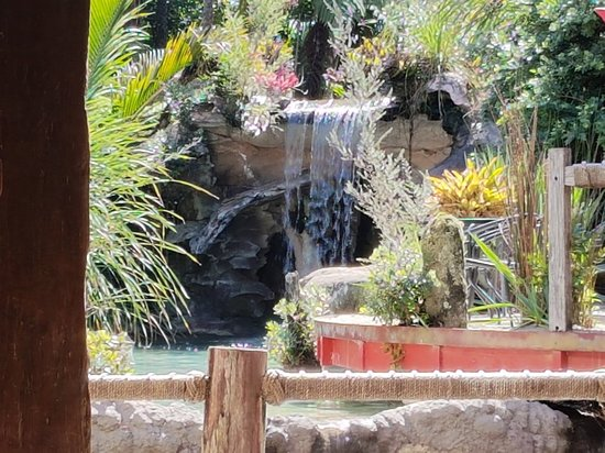 The Lost Spring: 20180224_113738_large.jpg