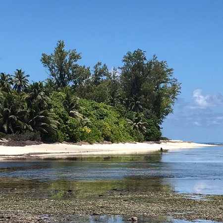 Denis Island, Seychelles: photo5.jpg