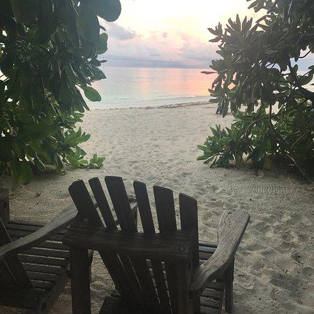 Denis Island, Seychelles: photo7.jpg